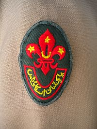 Pakistan Boy Scouts Association emblem on uniform.jpg