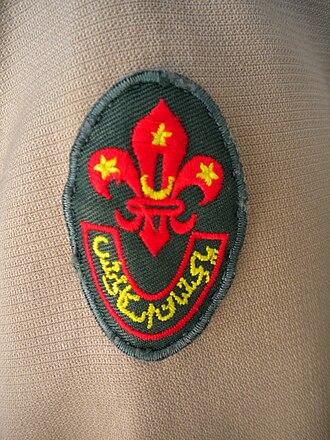 Pakistan Boy Scouts Association - Image: Pakistan Boy Scouts Association emblem on uniform
