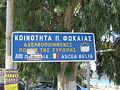 Palaia Phokaia (Attic) - town twinning with Ascea-Velia.JPG