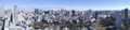 Panoramic view of Tokyo from the Tokyo Tower.png