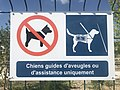 Parc level - interdi aux chiens sauf chiens d'aveugles.jpg