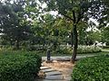 Park near National Centre for the Performing Arts (China).JPG