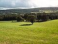 Parkland at Rhyddings Lathe - geograph.org.uk - 60788.jpg