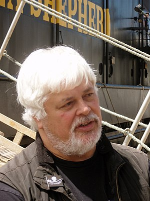 Portrait of Paul Watson, Captain of Sea Shephe...