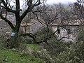 Perithia 491 00, Greece - panoramio - Filippos Parginos (3).jpg