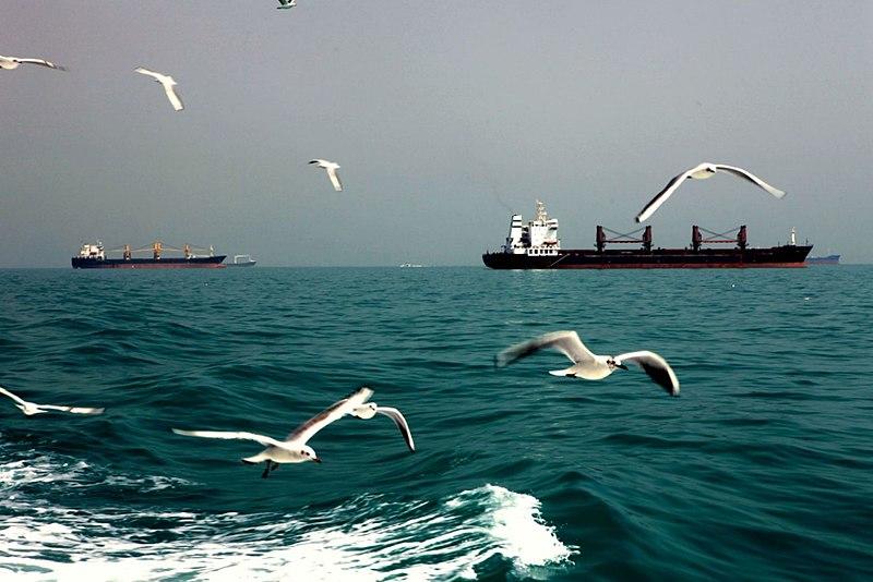 File:Persian Gulf Near Hormuz Island.jpg