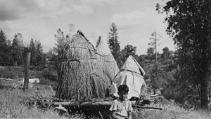 Tuolumne Band of Me-Wuk Indians - A Tuolumne boy stands next to several acorn silos, 1937