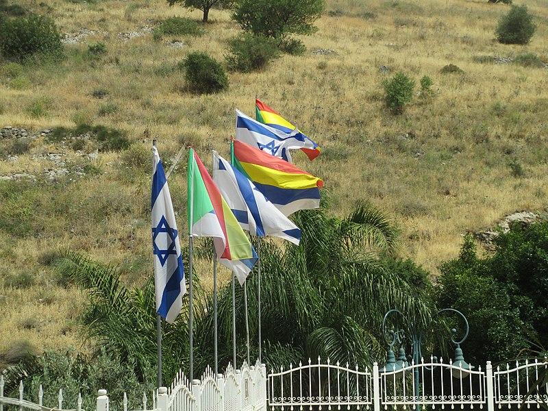דגלים בנבי שועיב