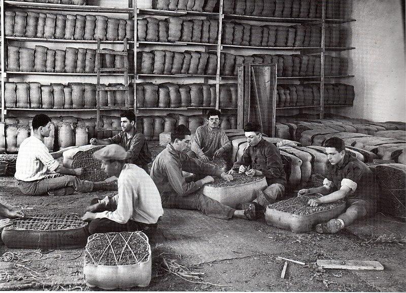 תעשיית טבק בתל אביב