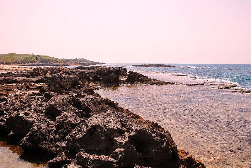 שמורת ים דור -הבונים