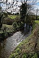 Pincey Brook from Sheering Road bridge looking west in Sheering, Essex, England 01.jpg