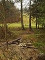 Pri rieke - panoramio.jpg