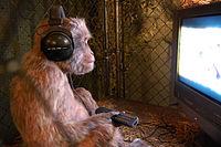 Primate (3009900665)