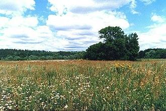 """Ulyanovsk Oblast - Nature reserve """"Privolzhskaya lesostep"""""""