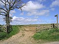 Public bridleway to High Abberwick - geograph.org.uk - 438641.jpg
