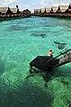 Pulau Kapalai - Borneo.jpg