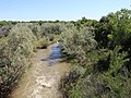 Purgatoire River.JPG