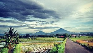 Scenery of Purworejo with the view of mountain Sumbing & Sindoro at the distance