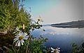 Pyhalahti Beach Lake Keitele.jpg