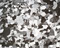 Quartzite 200708-1 xpl 20x.tif