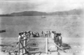 Queensland State Archives 5803 Hon James Christian Peterson Home Secretary and party with residents of Fantome Island June 1931.png