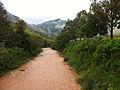 Río Grande de Jayuya 02.JPG