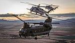 RAF CH-47 Chinook and US Marine CH-53 Sea Stallion MOD 45164922.jpg