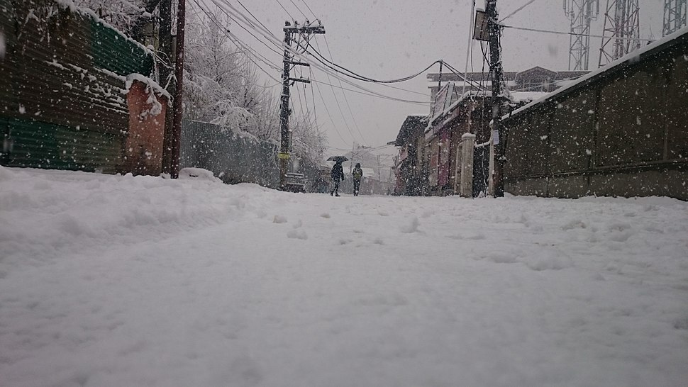 Rajbagh Snow