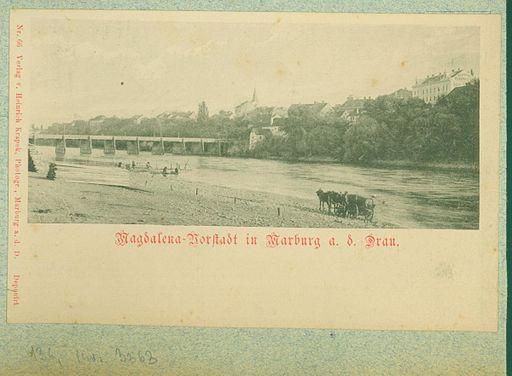 Razglednice Maribora, ki jih je leta 1903 uredil dr. Amand Rak (373)