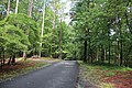 Red Top Mountain State Park campgrounds, June 2018.jpg