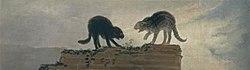 Francisco Goya: Q2155855