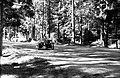 Ringrajasõidud Pirital 71 (03) Heik Reitel-Argo Pappel.jpg
