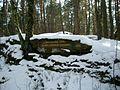 Ritterstein 219 Burghalder Fels.JPG