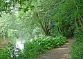 River Aire (28010490616).jpg