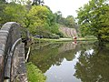 River Churnet at Consallforge - geograph.org.uk - 582346.jpg