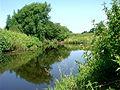 River Dane - geograph.org.uk - 25347.jpg