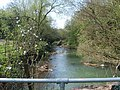 River Stour - geograph.org.uk - 401604.jpg