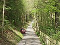 Road along the north bank of Geraint Hill - geograph.org.uk - 165661.jpg