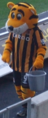 Roary the Tiger Hull City v. Newcastle United 1.png