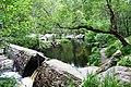 Rogie Sluice - geograph.org.uk - 1062716.jpg