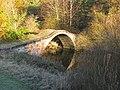 Roman Bridge over the South Calder Water - geograph.org.uk - 1031653.jpg