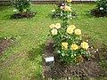 Roseto-di-roma-capitale---sito-di--il-cimitero-ebraico--dal-1645-fino-al-1934 9005796993 o 44.jpg