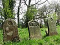 Row of headstones - geograph.org.uk - 773295.jpg