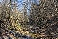 Ruisseau du Vialais.jpg