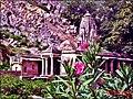 Rundh Bhangarh, Rajasthan, India - panoramio.jpg
