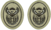 SANDF Rank Insignia WO2 embossed badge.png