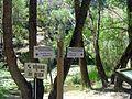 SEÑALES - panoramio.jpg