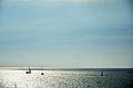 Sailboats (9521511781).jpg