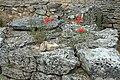 Saint-Rémy-de-Provence - Glanum 13.jpg