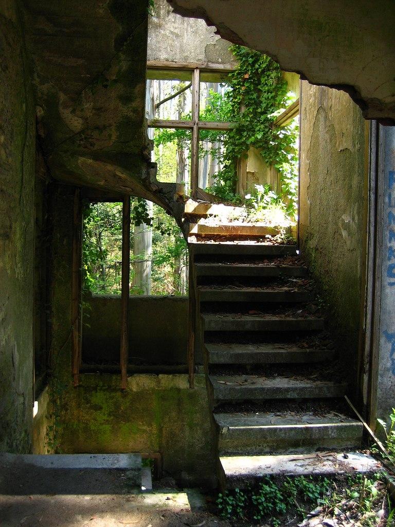 Sanatorio de tuberculosos no Paraxón, Bragade, Cesuras